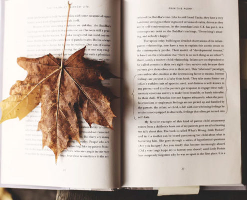 bibliotherapy book
